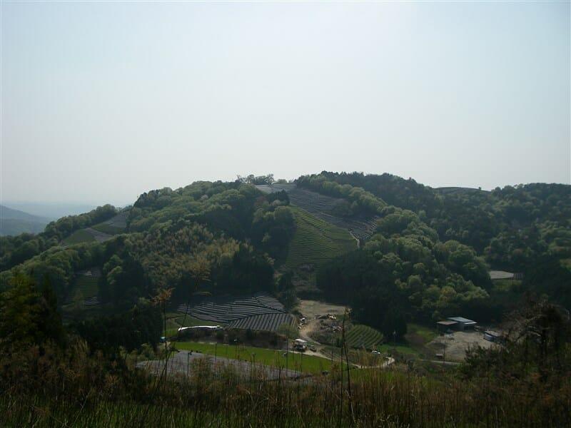 三国越え林道からの景色