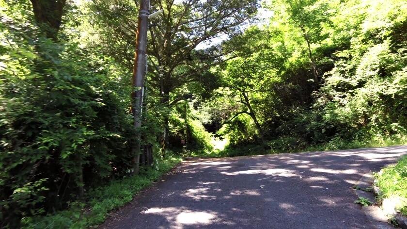三叉路に出た。左に行くと岩湧山。右に行くと滝畑ダム「夕月橋」という標識があった。