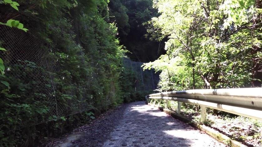 道がさらに狭くなり、路面には石が埋め込まれており、とてつもなく走りにくい。まるで「パリ~ルーベのパヴェ」という状態。