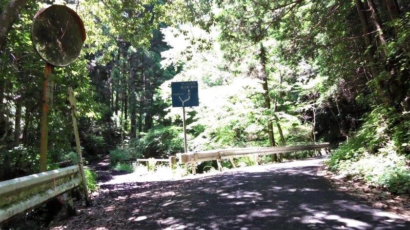 左:林道野谷線、右:府道61号線の標識が現れる