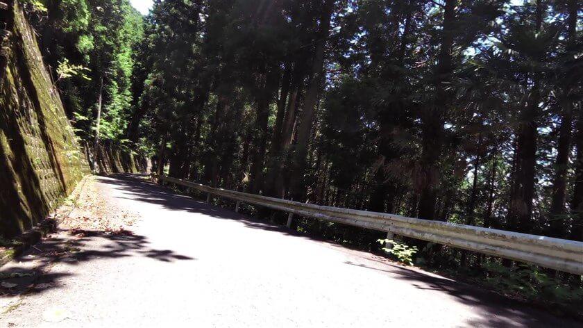 和歌山県側へ、下り開始