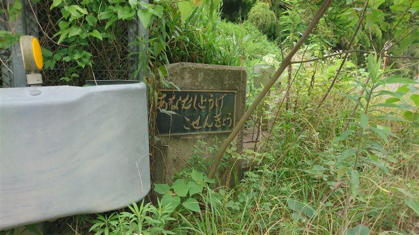 傍らの石柱に、『あなむしとうげ こせんきょう』の標識がある