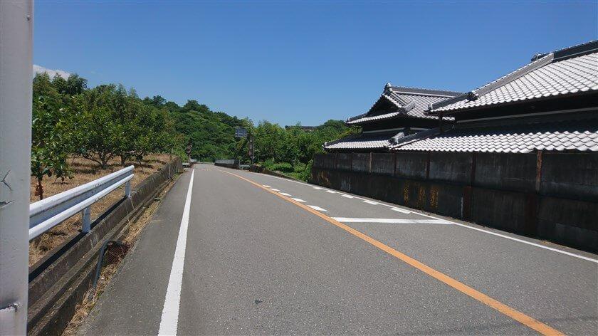 広域農道:橋本方面(左・東)