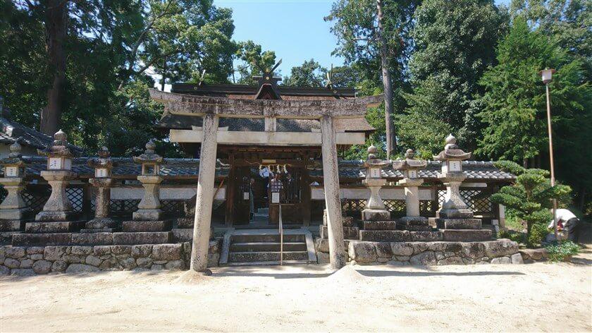 高向神社 本殿