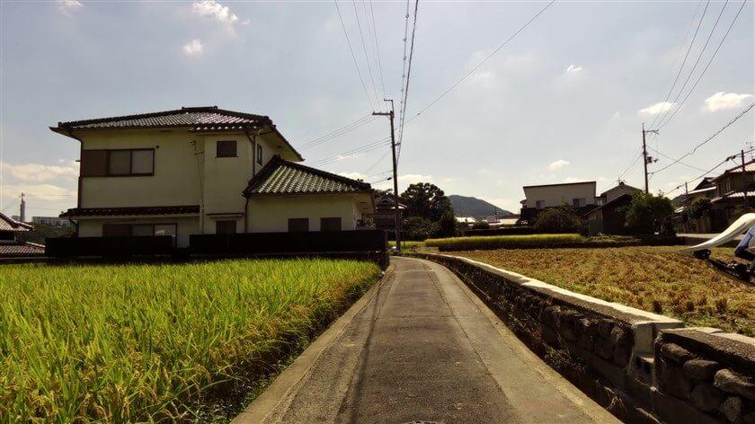 高向神社に向かう道