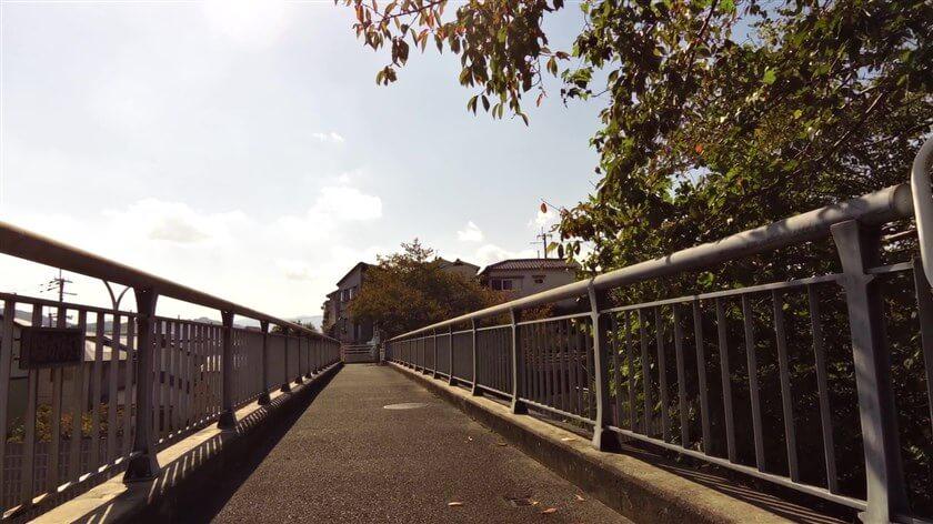 歩道橋で、国道309号線を渡る
