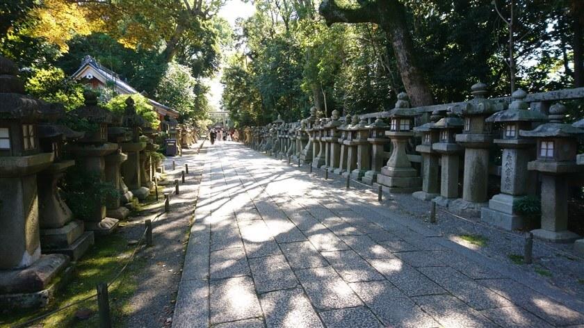 参道に並ぶ石灯籠