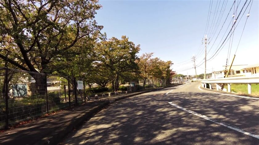 レインボーホール(富田林市市民会館)前辺り