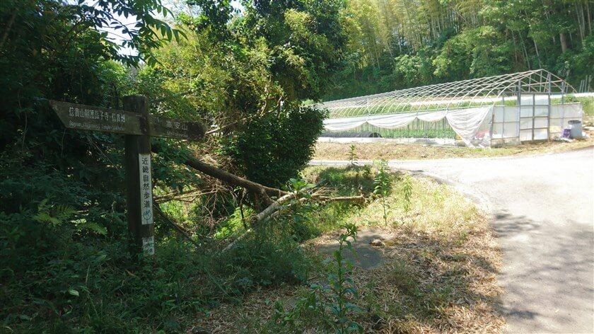 「D」地点の左側に「近畿自然歩道」の道標があり、右 → 高安山と記されている